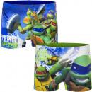 Turtles schwimmboxer