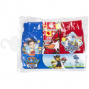 Paw Patrol 3 pack briefs Powsome work