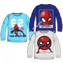 Spiderman long sleeves