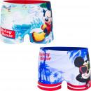 Mickey pływać bokser