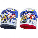 Paw Patrol hats polar fleece Air Patrol