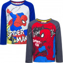 Spiderman long sleeves