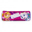 Paw Patrol pencil case Call the Paw Patrol!