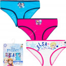 wholesale Underwear: Frozen Disney 3 pack briefs