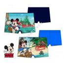 Mickey swim boxers