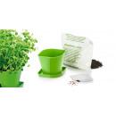 wholesale Household & Kitchen: Herb cultivation set SENSE, Oregano
