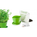 Herb cultivation set SENSE, thyme