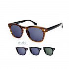 19-250 Kost Sunglasses