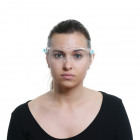 Face shield with nose clip