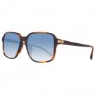 Dunhill Sunglasses SDH010 0748 55