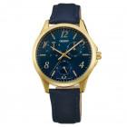 Orient regarder la montre FSX09004D0