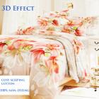Bedding set, cotton, 200x230, 3 pieces, Z025