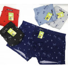 4814 Trendy Men Boxer Shorts, L-3XL, Dragonfly