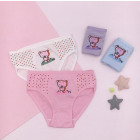 4751 Panties for a Girl, Sweet Bear 3-8 years old