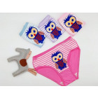 4762 Panties for a Girl, Owl, 3 - 8 years old