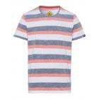 signori T-Shirt Swan River Stripes, bianco / antra