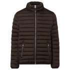 Men's quilted jacket, brown, assorted sizes