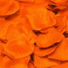 Luxus Orange Rosenblätter