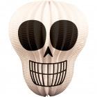 Cráneo lampion