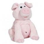 Kichern Schwein