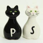 Katzen Salz und Pfeffer