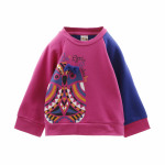 Clothing for children and babies - Sweatshirt 80%