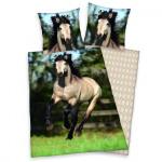 Giovane cavallo collezione biancheria letto