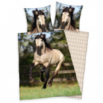 Jeune cheval collection drap