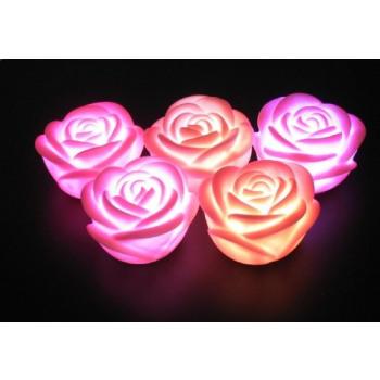 Décoration LED Sleeping Beauty
