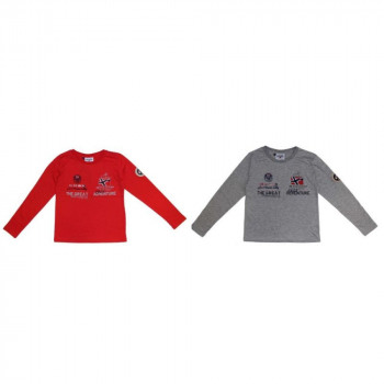 TEE Geographical Norway