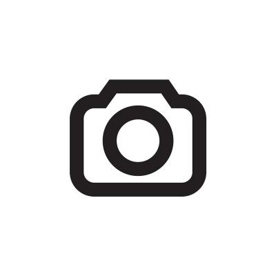 Bedspread Elegant Stripe Gray 260 x 250 Gray