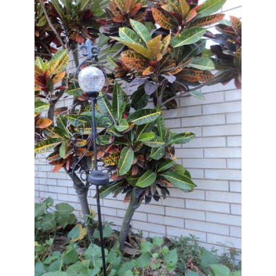 https://evdo8pe.cloudimg.io/s/resizeinbox/130x130/https://www.koeglershop.de/idoc/images/SAO.ITEM_M/8757-Solarlampe_mit_Metallgestell__106x14x7cm_inkl__Stab__Gartendeko_1000_1000_1_20141021103.jpg