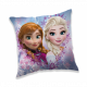 frozen Frozen Frame Pillow