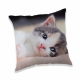 Photoprints Sweet home Kitten Pillow