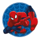 SPIDER-MAN Spider-man 01 Pillow form