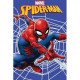 SPIDER-MAN Spider-man Web blancket fleece