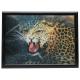 3D image Leopard about 40 x 60 cm
