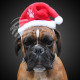 Kerstmuts groot voor knuffelen & Huisdieren