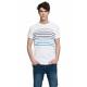 VARSITY - VARSITY ERBE T-Shirt - Weiß