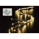 Luce del filo di catena 40 LED, interno 50 cm, 8 r