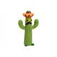 Cactus Mexico ceramica macchiato (B / H / T) 13x21
