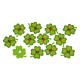 Scatter-leaf clover-set, 12 pezzi di feltro, B5 cm