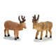 Miniature deer from poly, 5- times assorted , B6 x