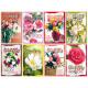 Geburtstags-Karte Blumen