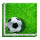 Football PARTY (NEW) - 20 Paper Napkins (2-lagi