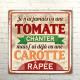 Tomato and Carrot Metallic Plate