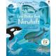 Book Usborne - Első matricakönyv Narwhals
