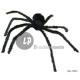 Spider 85cm light