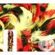 1.90m rode boa 50gr geel & zwart duitsland