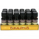 Fragrance Oil Eucalyptus 10ml in glazen fles